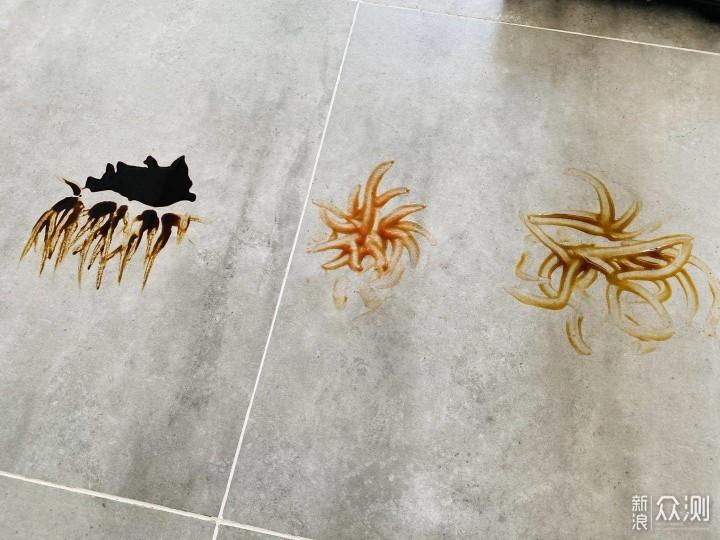 扫地机讲了那么久,好用到爆的洗地机你见过么_新浪众测