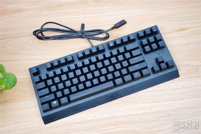 """雷蛇推出全新""""小蜘蛛""""键盘,依旧是那个味道_新浪众测"""