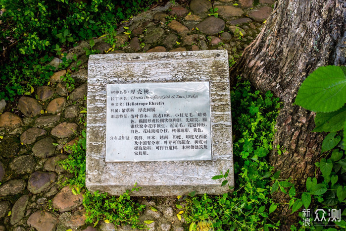 """""""桂林山水甲天下"""" 摩崖石刻真迹原来在这里_新浪众测"""