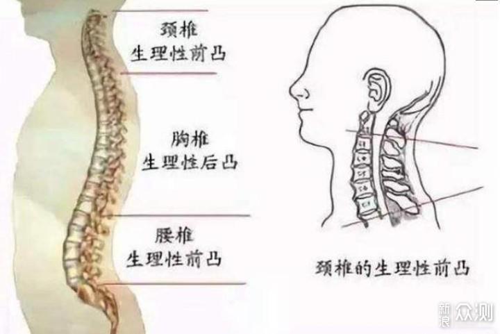 打工人,你的颈椎还好吗?多款护颈好物分享_新浪众测