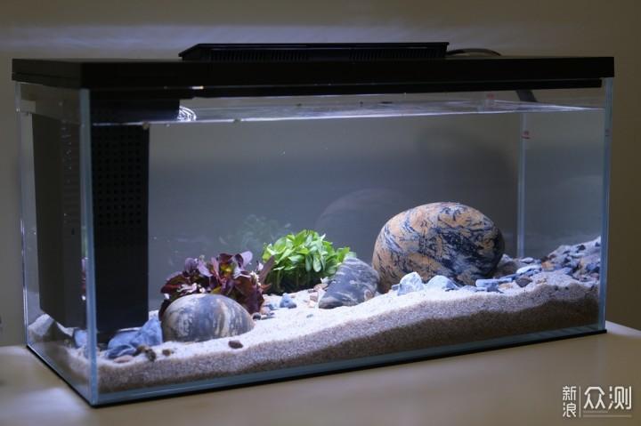 小小水空间,生活添乐趣,小佩起源纪智能鱼缸_新浪众测