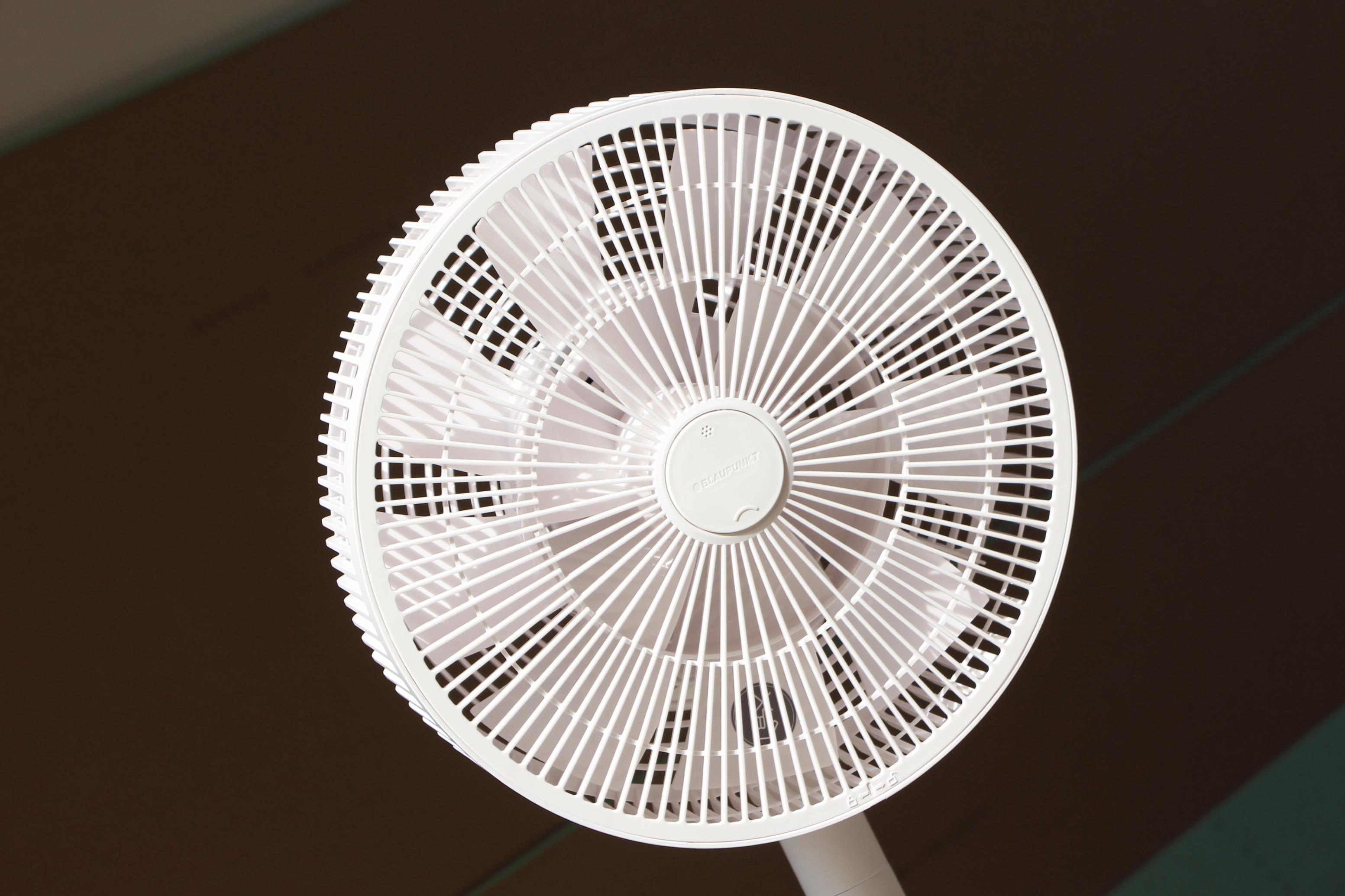 风扇美学·不止智能 德国蓝宝超静空气循环扇