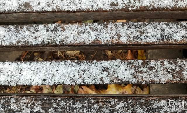 北京的初雪,不错不错啊_新浪众测