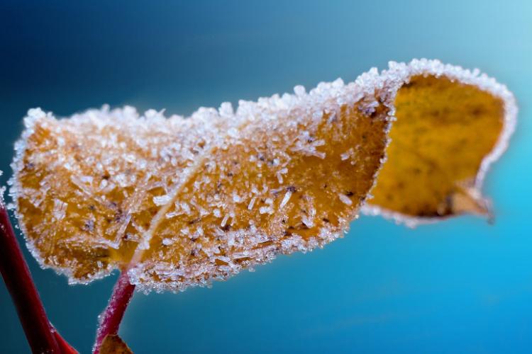 你有什么值得分享的过冬神器吗?