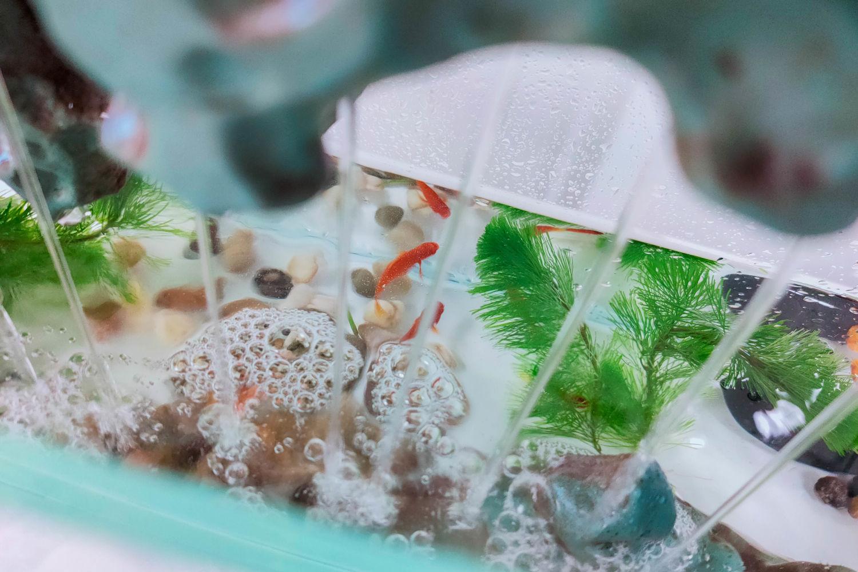 天空之城+流水造型,MOMOYOO水光山色鱼缸体验